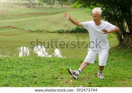 asian senior man performing tai chi - stock photo