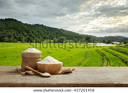 Asian white rice or uncooked white rice with the rice field background - stock photo