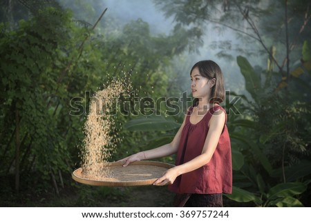 Asian Woman winnowing rice separate between rice and rice husk - stock photo