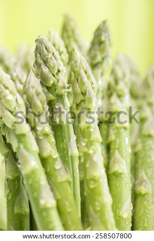 Asparagus - stock photo