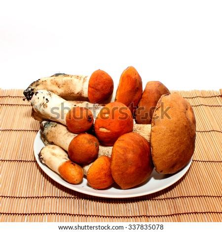 Aspen mushrooms - stock photo