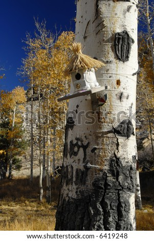 Aspen tree in Eastern Sierra Nevada near Lee Vining with a birdhouse made by children from a local school