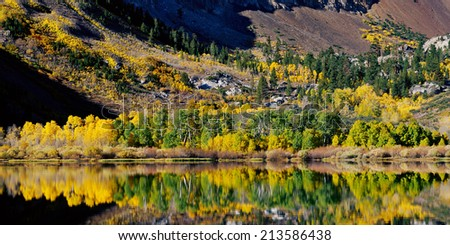 Aspens in fall, Parker Lake, Eastern Sierra, California. - stock photo