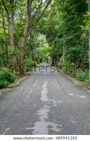 Asphalt country road with green trees
