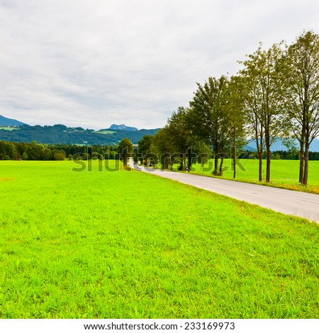Asphalt Road along the Pasture in Southern Bavaria in the Rainy Day