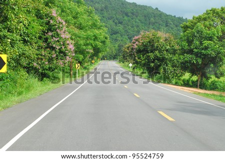 Asphalt road along with tropical rain forest