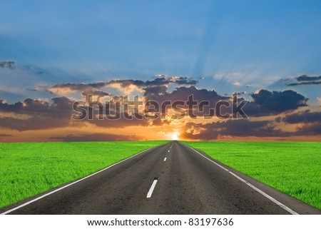 asphalt road among a green fields at the sunset