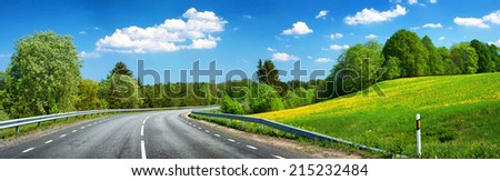 Asphalt road and dandelion field - stock photo