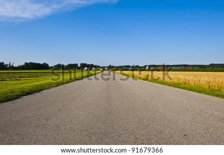 Asphalt Road Between Wheat Fields in Bavaria, Germany - stock photo