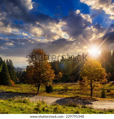asphalt road going through green meadow with trees near autumn forest with foliage on hill - stock photo