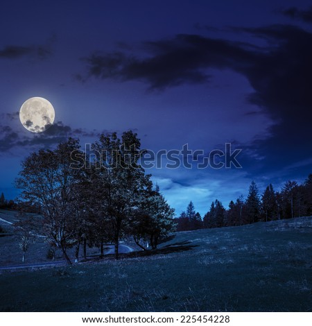 asphalt road going through green meadow with trees near autumn forest with foliage on hill at night in fool moon light - stock photo