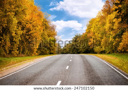asphalt road in autumn forest and blue sky - stock photo