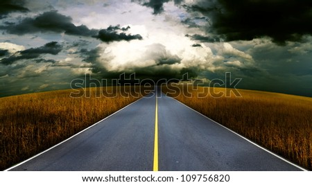 Asphalt road in the meadow. - stock photo
