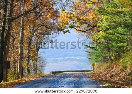 Asphalt road into autumn foliage - Shenandoah National Park, Virginia United States  - stock photo