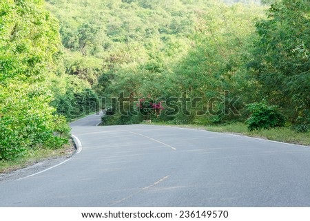 Asphalt road into green mountain - stock photo