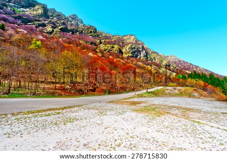 Asphalt Road  on the Slopes of the  Italian Alps in Piedmont - stock photo