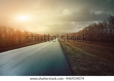 Asphalt road stretches into the distance among the beautiful nature at sunset. Toned