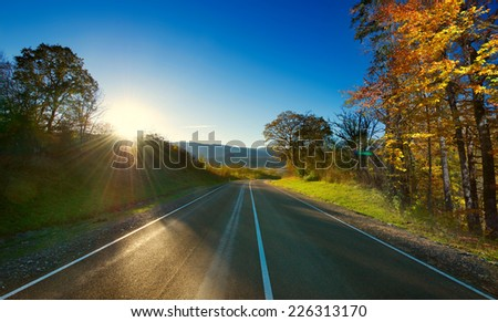 Asphalt road through the forest . A series of pictures of autumn road - stock photo
