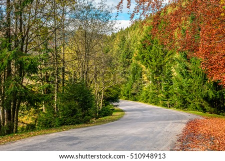 asphalt road through the forest on sunny autumn day