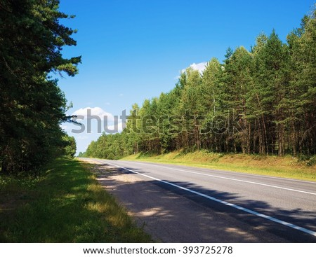 Asphalt road through the pine forest. Sunny summer day. - stock photo