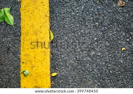Asphalt road with tree leaves