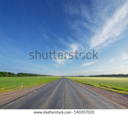 asphalted road among fields in the morning