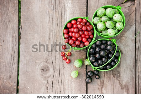 Assorted berry - stock photo