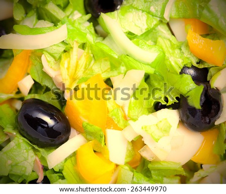 Assorted green leaf lettuce with squid and black olives. Close up. instahram image retro style - stock photo