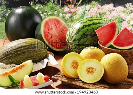 assorted melons and watermelons on a table at garden - stock photo