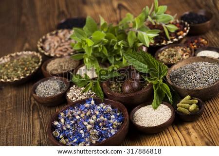 Assorted natural medical, herbs and mortar - stock photo