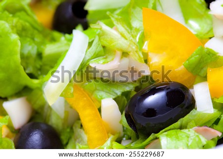 Assorted salad of green leaf lettuce with squid and black olives, close up
