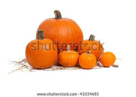 Assorted sizes of pumpkins with straw on a white background - stock photo