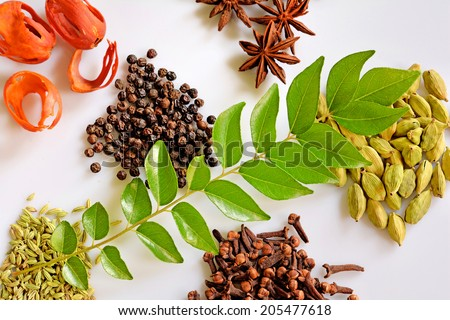 Assorted spices from Kerala, India on white background. Nutmeg, pepper, star anise, clove, cumin, cardamon and curry leaf. - stock photo