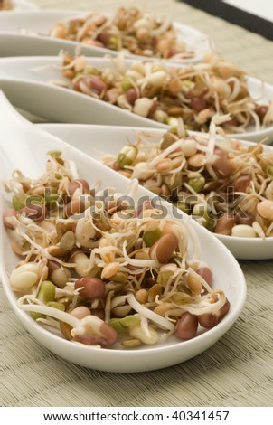 Assorted sprouts in a white spoon. Selective focus.