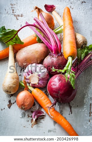 Assorted types of root vegetables - stock photo