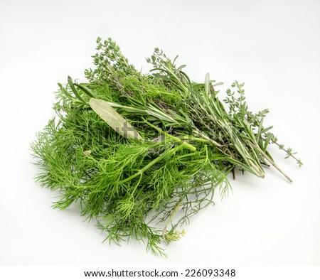 Assortment aromatic herbs - stock photo