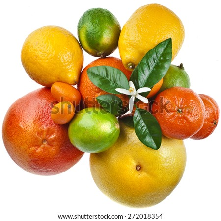 Assortment of  Beautiful citrus fruits top view close up macro isolated on white background - stock photo