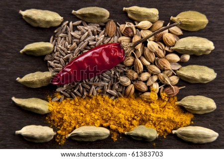 Assortment of curry spices on a wooden board - stock photo