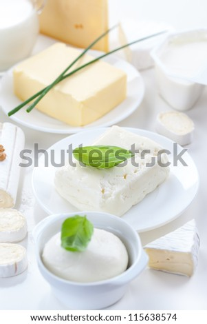 Assortment of dairy products on white background - stock photo