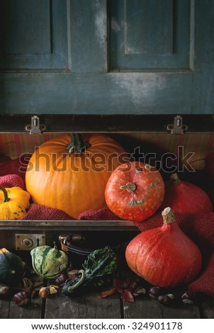 Assortment of different decorative and edible pumpkins and chestnuts in open vintage suitcase with red sacking over old wooden table. Dark rustic style - stock photo