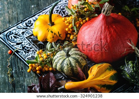Assortment of different edible and decorative pumpkins and autumn berries in black decorative tray over wooden surface. - stock photo