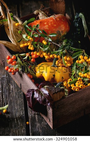 Assortment of different edible and decorative pumpkins and autumn berries in wooden box over wooden background. - stock photo