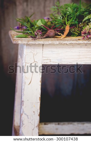 Assortment of fresh herbs mint, oregano, thym, blooming sage and young vegetables beetroot and carrot over old wooden stool as background. Natural day light. - stock photo