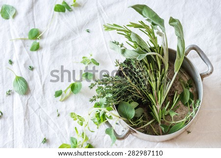 Assortment of fresh herbs thyme, rosemary, sage and oregano in old aluminum pan on white textile as background. Selective focus.Top view. - stock photo
