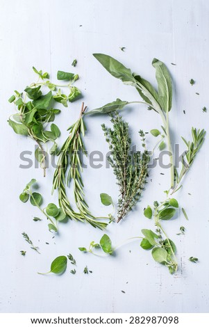 Assortment of fresh herbs thyme, rosemary, sage and oregano over light blue wooden background. Top view - stock photo