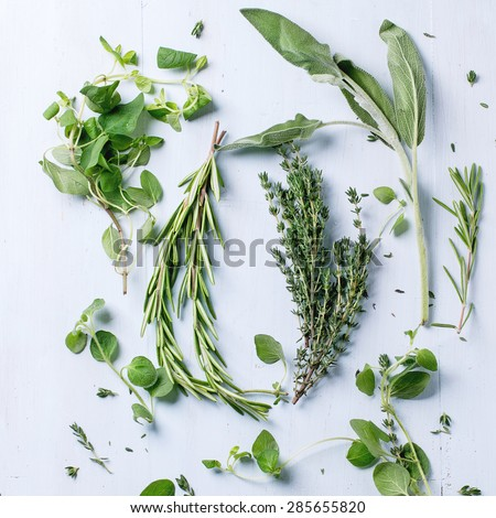 Assortment of fresh herbs thyme, rosemary, sage and oregano over light blue wooden background. Top view. Square image - stock photo