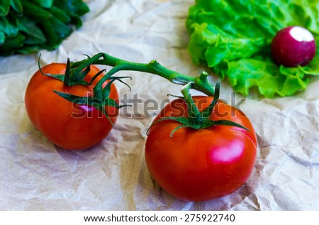 Assortment of fresh vegetables: tomatoes, cucumber, radishes, lettuce - stock photo