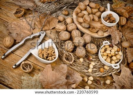 Assortment of nuts, an autumn produce still life - stock photo