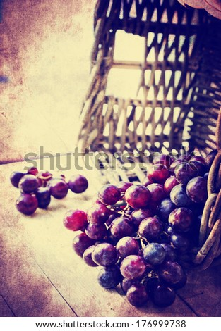 assortment of ripe sweet grapes in basket on texture background/Grapes in the basket/ Summer Wine Season - stock photo
