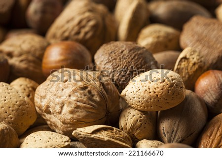 Assortment of Whole Raw Mixed Nuts for the Holidays - stock photo